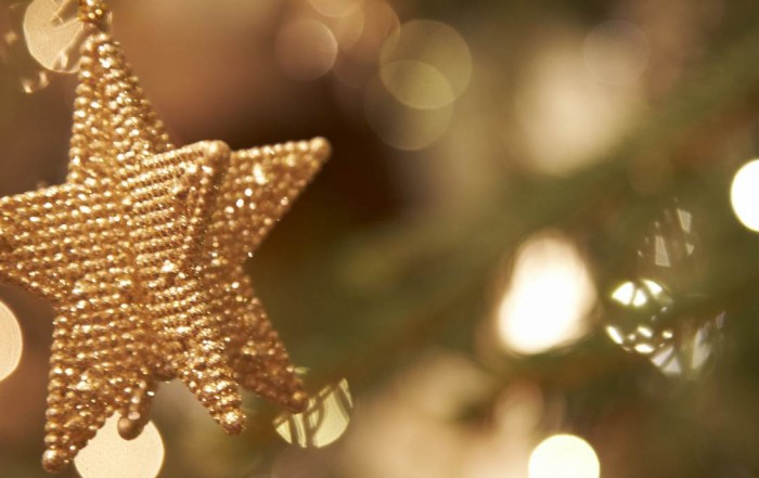 Christmas at HMA