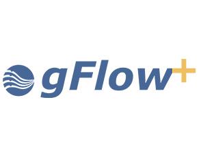 gFlow+